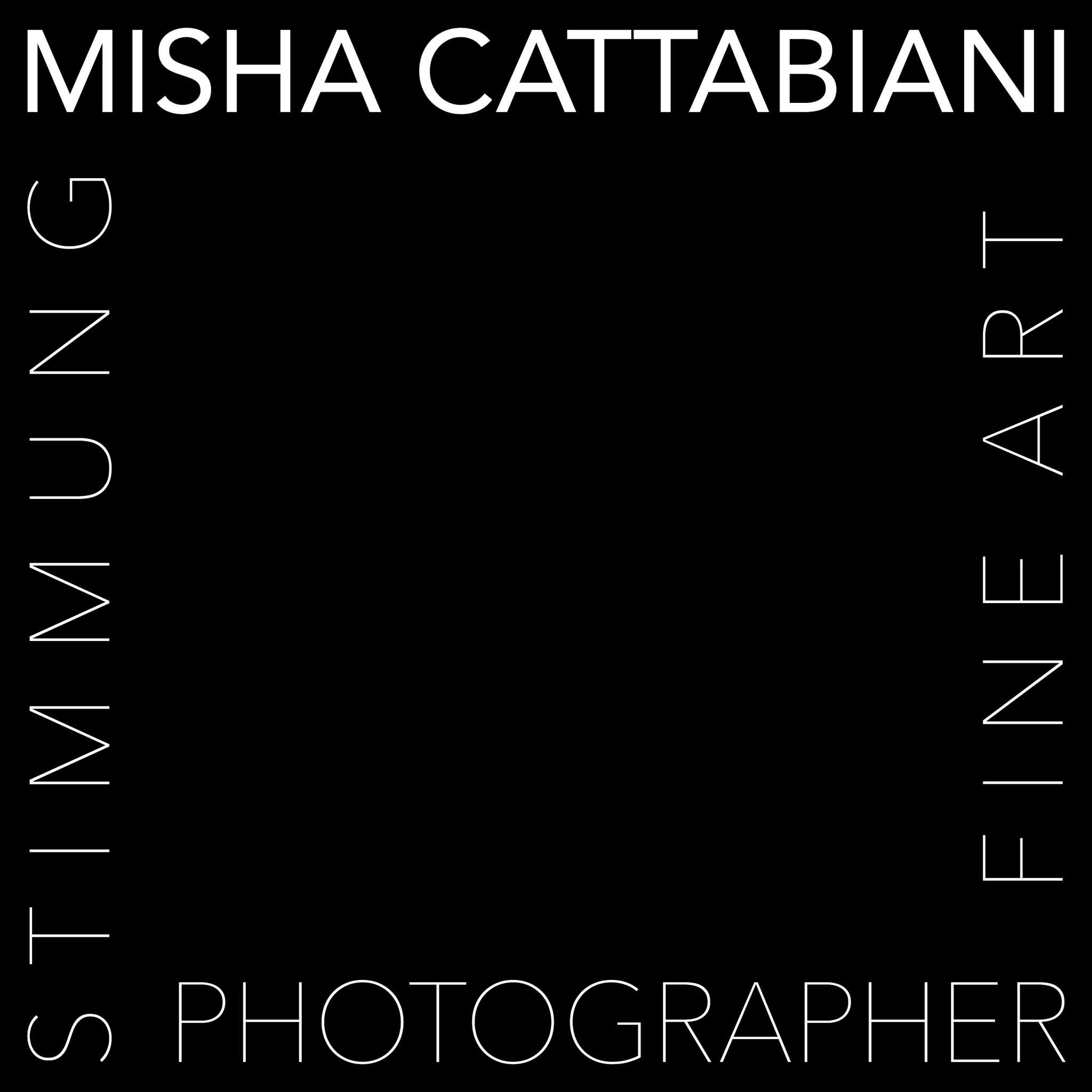 Misha Cattabiani